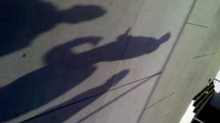 real shadow sexing cute kittens