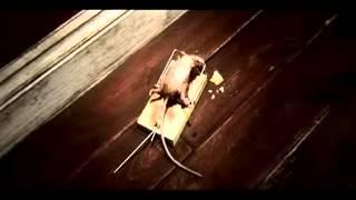 Cosas de ratones!