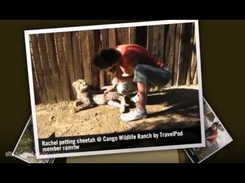 Cango Wildlife Ranch – Oudtshoorn, Western Cape, South Africa