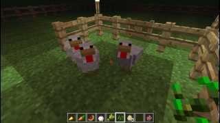 """Minecraft - Chicken breeding """" Beginner's How To"""""""