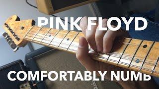 Pink Floyd David Gilmour - Comfortably Numb Solo - POV