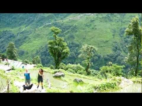 Nepal lauriana marianna