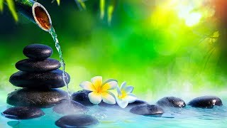 Relaxing Music, Reiki Healing Music, Meditation, Zen, Sleeping Music, Calm Music, Yoga, Study, ☯1964