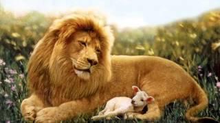 Leão e Cordeiro   clipe