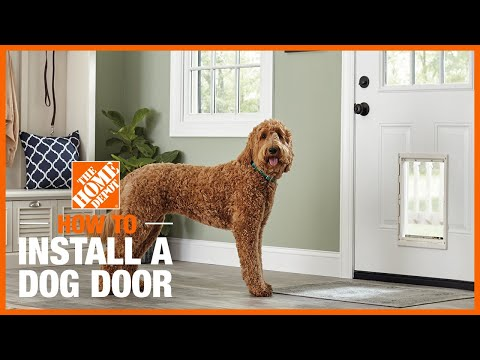 How to Install a Dog Door