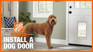 A dog next to a front door with a dog door