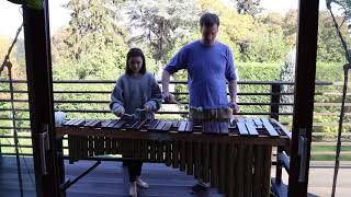 Adele - Water Under The Bridge - Marimba Cover