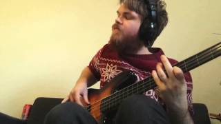 We Can Work It Out (Stevie Wonder Bass Cover)