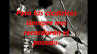 Amor De Cabaret - La Sonora Santanera