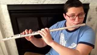 Nicotine by Panic! At The Disco (Flute Cover)