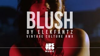 Elekfantz - Blush (Vintage Culture Remix) [Clipe Oficial]