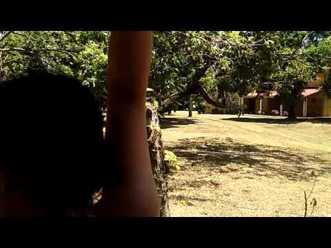 Nicaragua via Golf Cart #4
