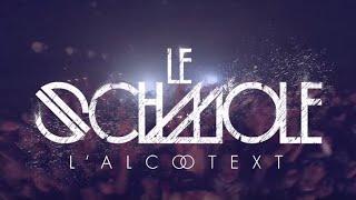 Le Schmole - Concert à l'Affranchi Le 18 Octobre (Teaser Live)