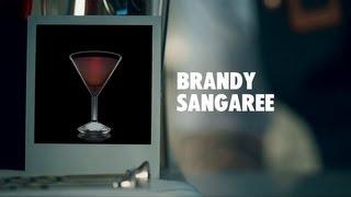 BRANDY SANGAREE DRINK RECIPE - HOW TO MIX