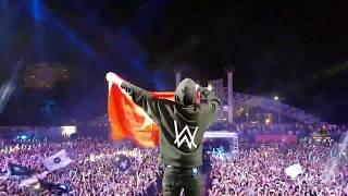 Alan Walker khoác cờ Việt Nam nhảy