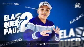 MC Pikachu - Ela Quer Pau 2 | Ela Quer Pau Denovo (Web Clipe) (DJ Biel Bolado - 2017)