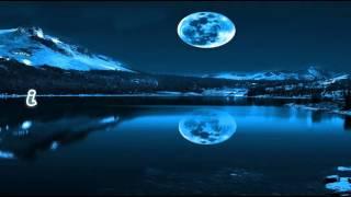 Gigi D'Agostino-Silence(Lyrics)