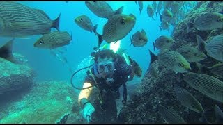 Live your GoPro by david_melendez_morales music Tidal Wave Silent Partner