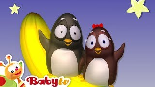 Twinkle Twinkle Little Star with Pim & Pimba and Oliver | BabyTV