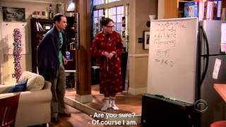 The Big Bang Theory 1x5 | Incorrect Equation