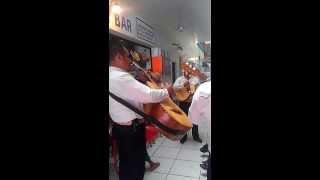Trio in Progresso Mex-Tuve Una Illusion