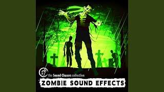 Dead Walking Zombie Sound Effect
