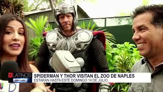 Los héroes de Marvel llegan al Naples Zoo