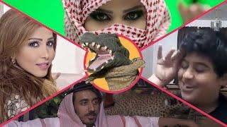 التمساح الحلقة 101: الشربليه الارواويه    Temsa7LY