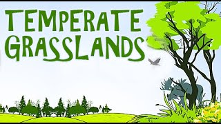 Lands | A Visit To The Grasslands With The Kids |  Temperate Grasslands | Part -1 Animated