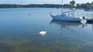 DSCN0887_Моя поїздка на Мазурські озера_28( Moja podróż na jeziora Mazurskie_28)