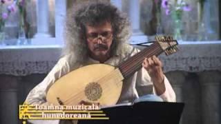 Spanish pavan - anonimous - Nicolae Szekely, lute.mpg