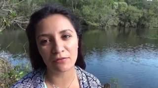Acabe Com Energias Negativas - Transmutar com a Natureza - Meditação