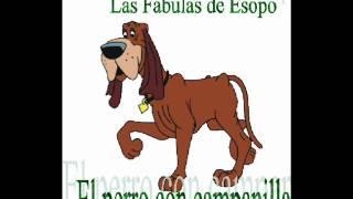 086 El perro con campanilla
