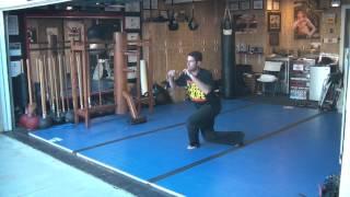 KB Warrior Sampling of Action Strength Malavidya(Bodyweight) Exercises