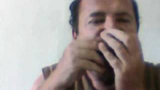 mario da gaita Eu te amo meu Brasil na gaita mario dagaita