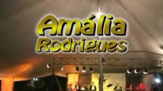 Nem às Paredes Confesso: Conservatória (Amália Rodrigues) Ronaldinho