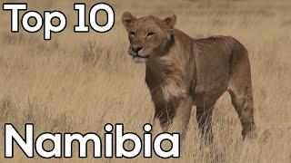 Top tien Namibië - Safari in Namibië & Botswana