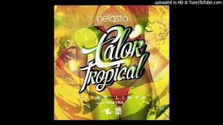 Dj Nelasta & Trigo Limpo ft. Rhayra - Calor Tropical (World Music)