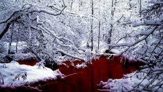 Dimmu Borgir: Perfection or Vanity (2001)