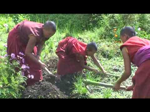 Looking for Buddha in Bigu