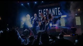 Elefante Te Quiero (Nueva Canción)