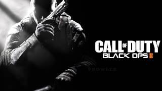 ziontifik black ops 2