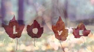 Marisa Monte - Amor I Love You