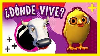 ¿Dónde vive el Pollito Pío? La Vaca Lola y más Animales de La Granja de Zenón | A Jugar