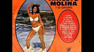 mi sombrero sabanero ANICETO MOLINA Y SU CONJUNTO