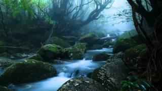 Jai Radha Madhav arranged by PussyJazz ft Ohm