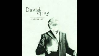 David Gray - Who's Singing Now