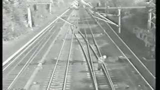 Un milagro entre las vías del tren!!!!!