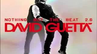 David Guetta   Play Hard  feat  Ne Yo   Akon    Clean