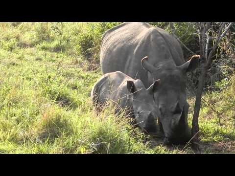 South Africa 2011 – Part 5